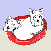 Cute Scottie Dogs