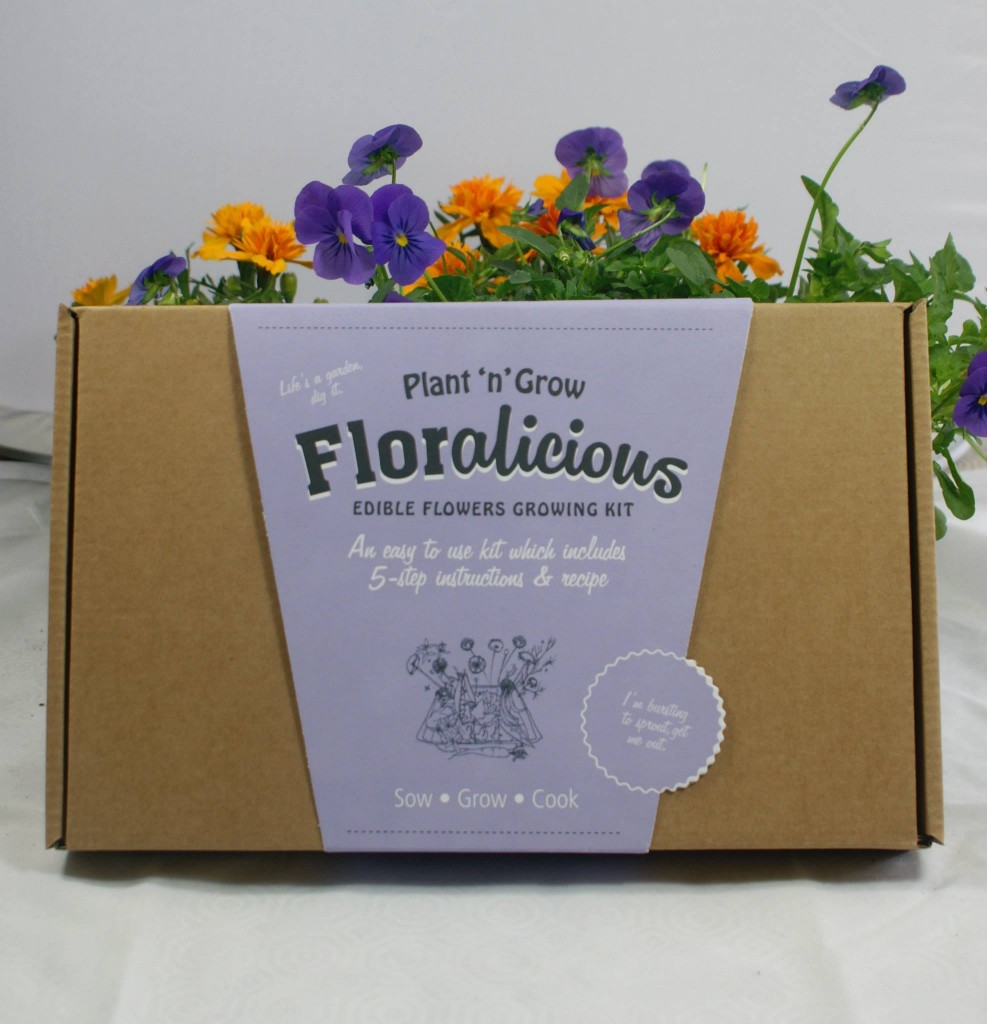 Floralicious Box with Illustrations by Sam Miller UK.